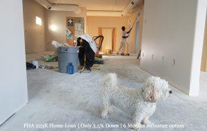 203k Home Renovation Loan Painter